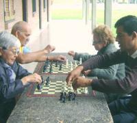 Los adultos mayores también definen las instancias provinciales en este caso el ajedrez